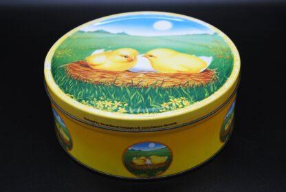 Leuk blik voor Pasen met kuikens