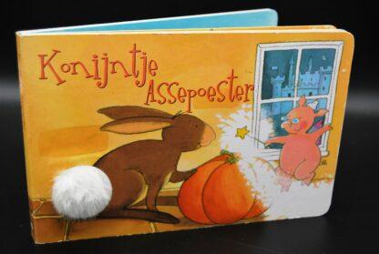 Superleuk sprookjesboek: Konijntje Assepoester