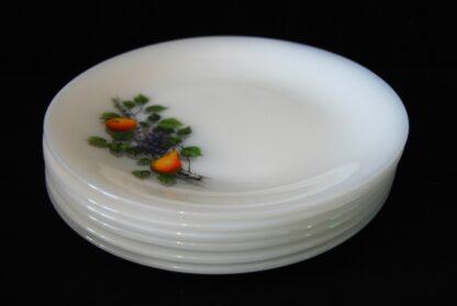 Vintage set- 6 platte dinerborden-Arcopal Fruits de France