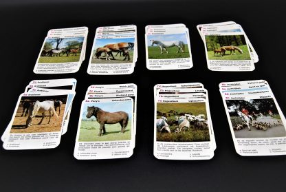 Paarden kwartet-Raaf kwartet-vintage spel