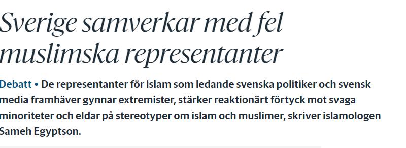 Sameh Egyptson: Sverige samverkar med fel islam