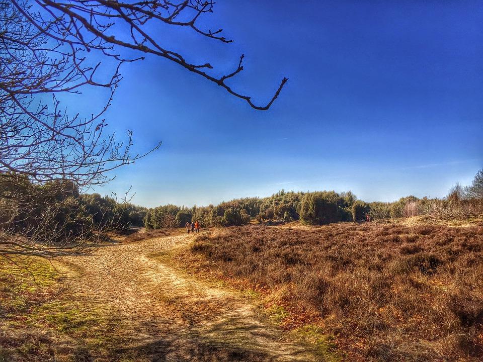 Drenthe Matingerveld Heide