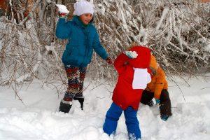 Plezier maken in de sneeuw