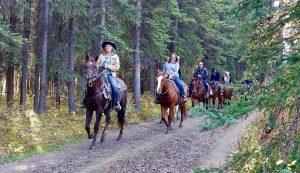Paardrijden in Drenthe