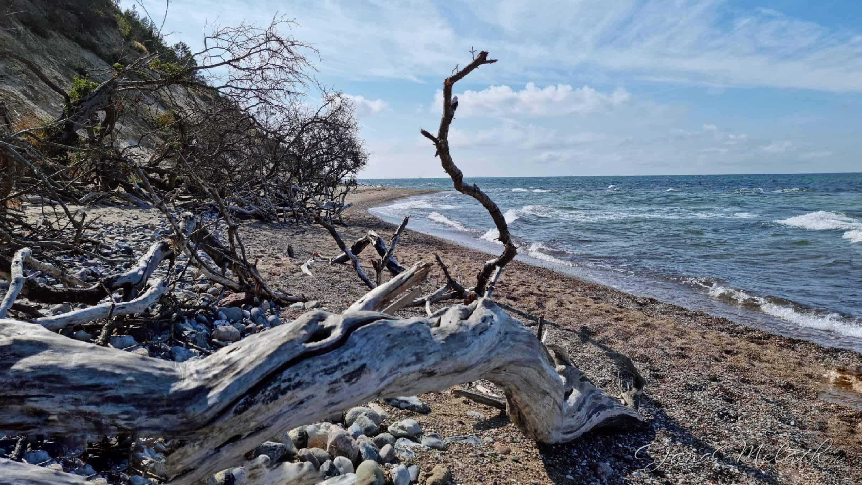 Urlaubserinnerungen - Steilküste Hiddensee