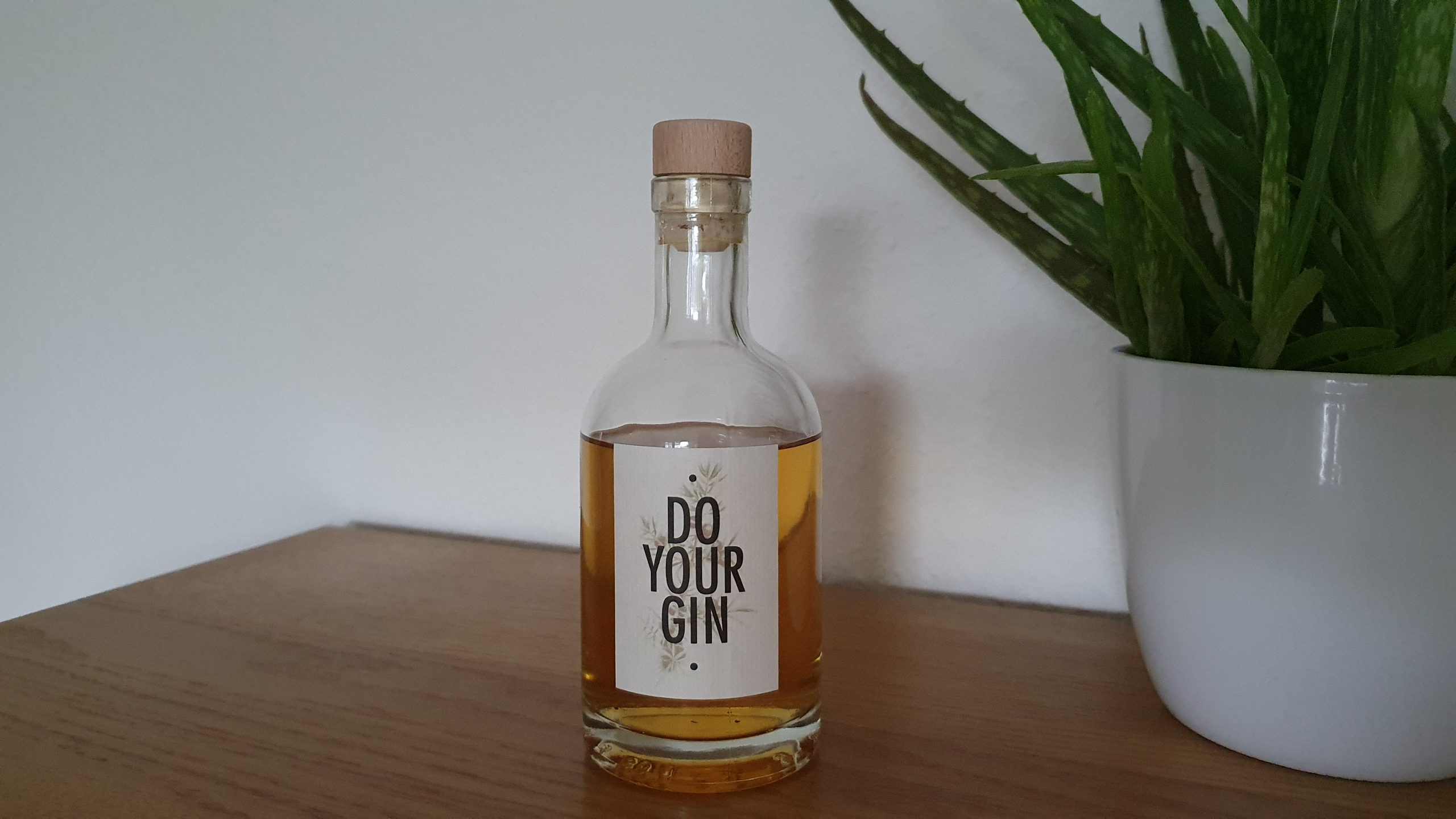 """DoYourGin """"The Vivid"""""""