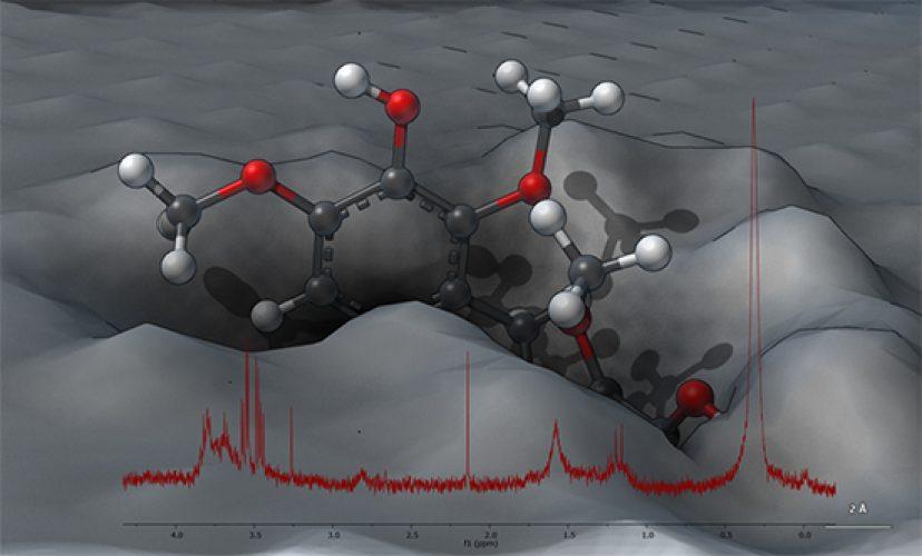 lignin nanoparticles Sevastyanova Lindén