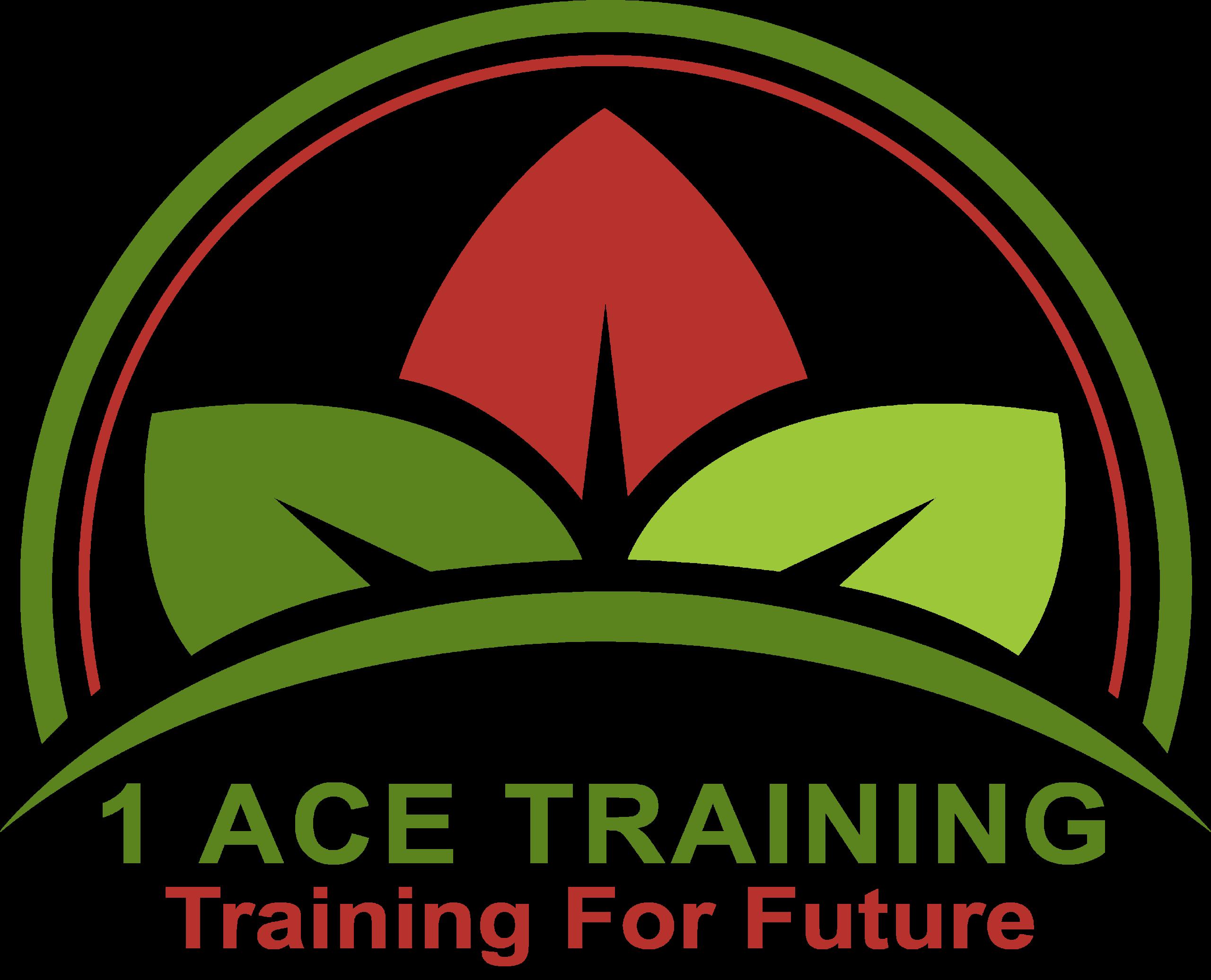 1Ace Training
