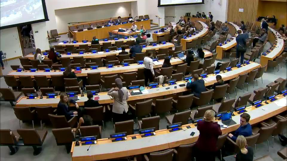 THE SIXTH COMMITTEE 74TH SESSION OF THE UNITED NATIONS GENERAL ASSEMBLY UNDER AGENDA ITEM 109