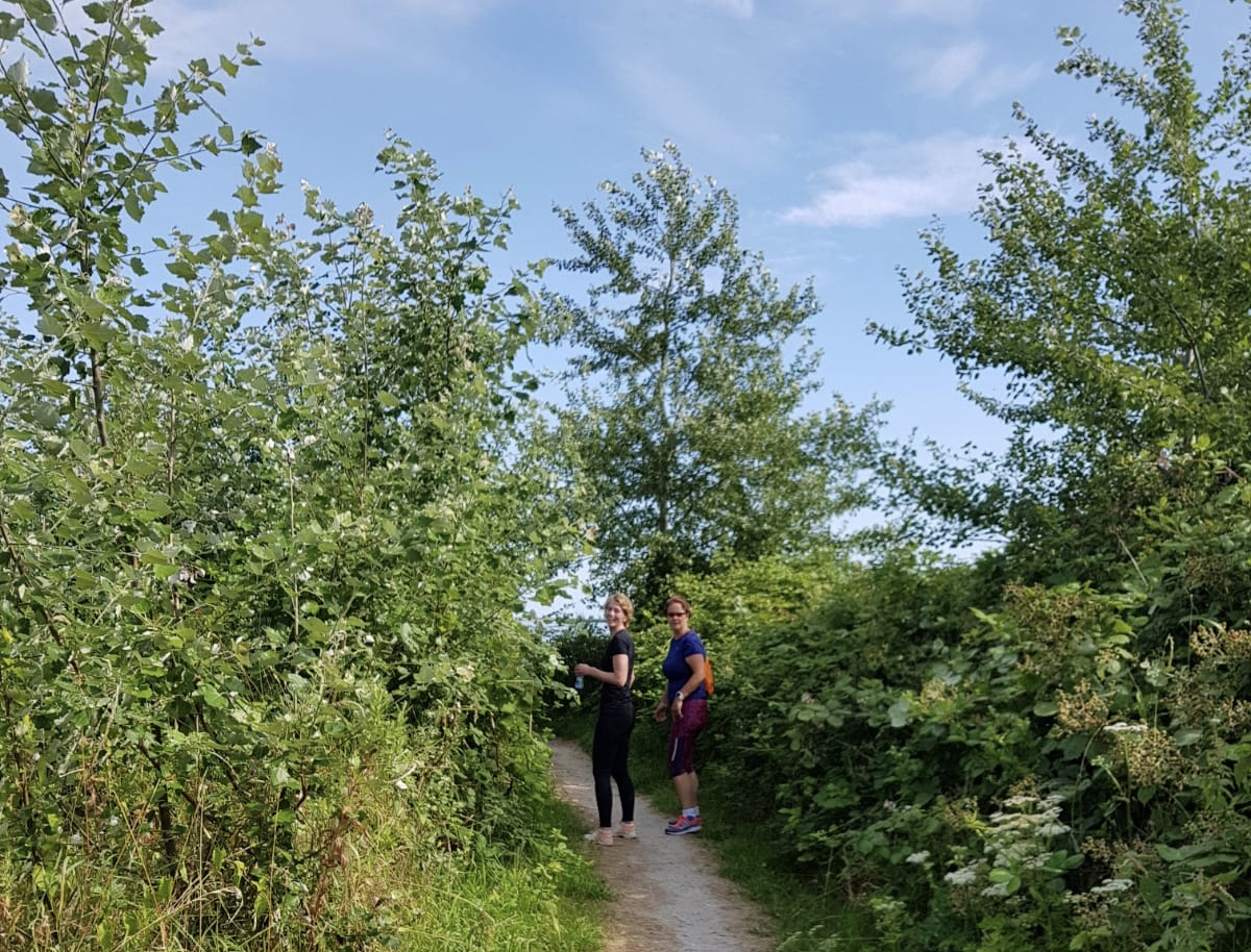 wandelbootcamp