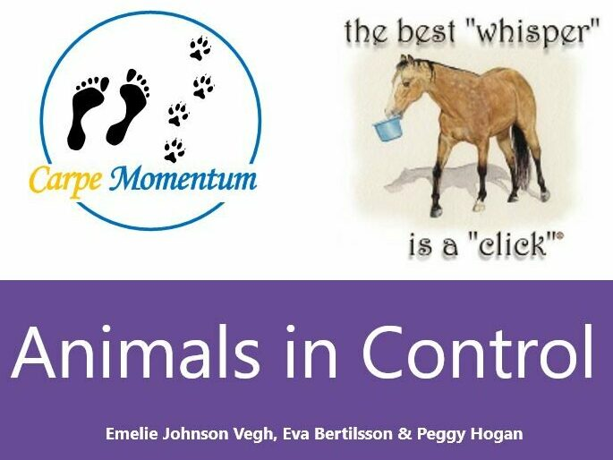 Animals in Control logo, linking to the Animals in control page