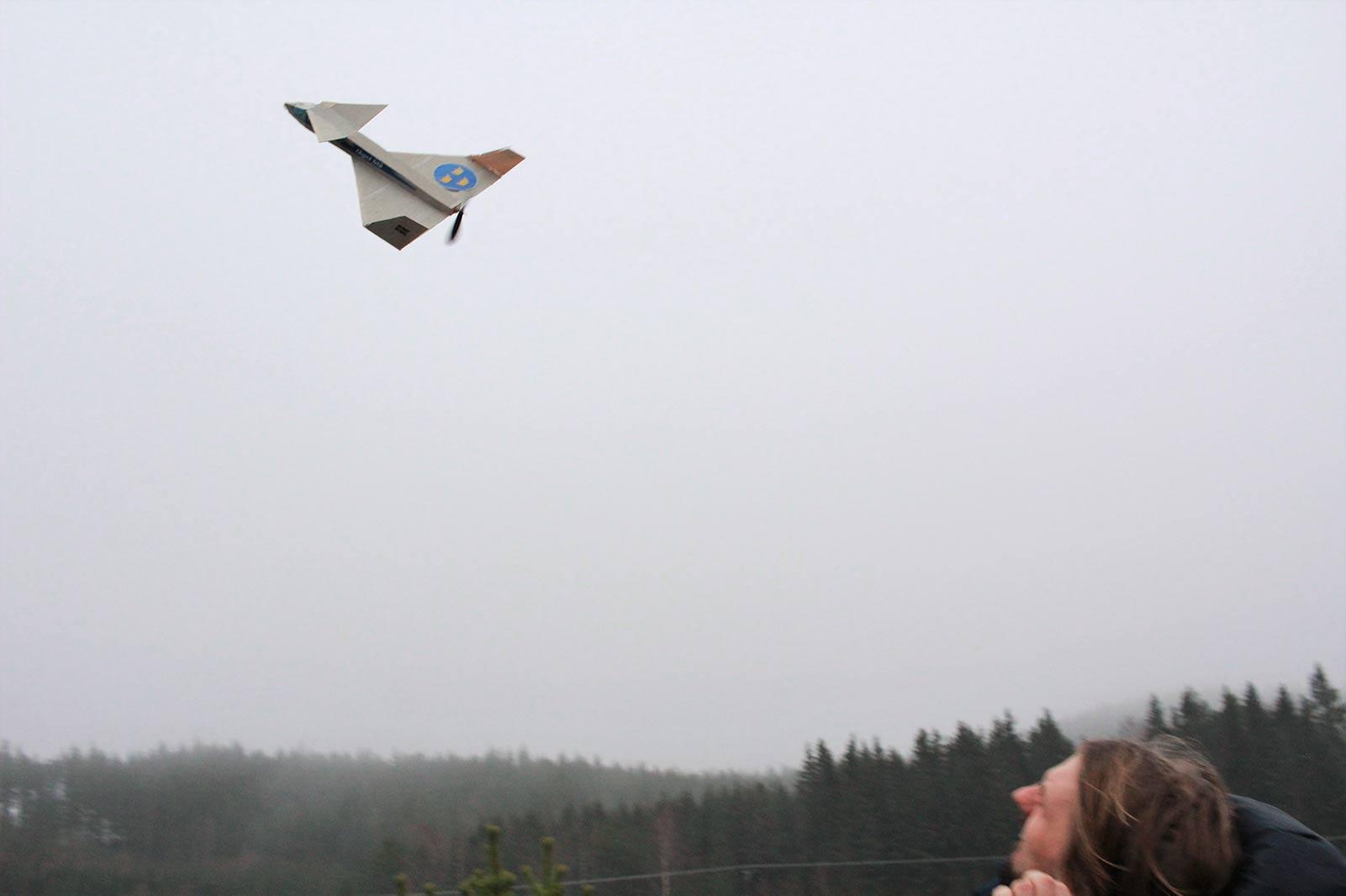Fågel blå från Ackus