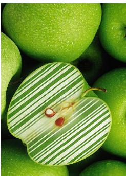 codice a barre SUI PRODOTTI mela