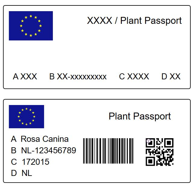 passaporto delle piante