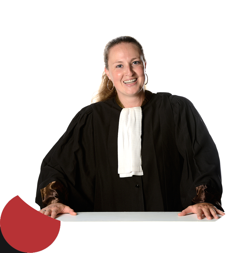 over advocaat scarlet moens