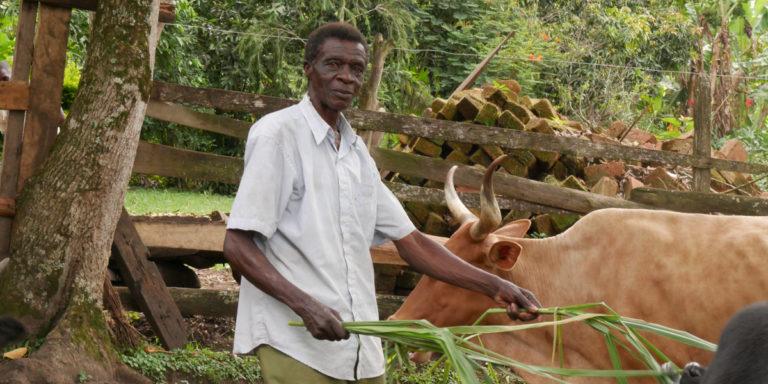 Zeitzeugengespräche in Uganda