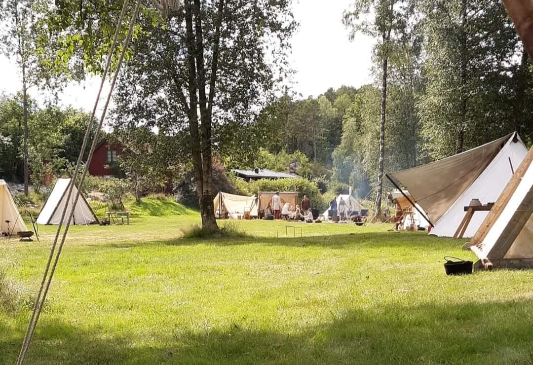 En uke i vikingtiden.