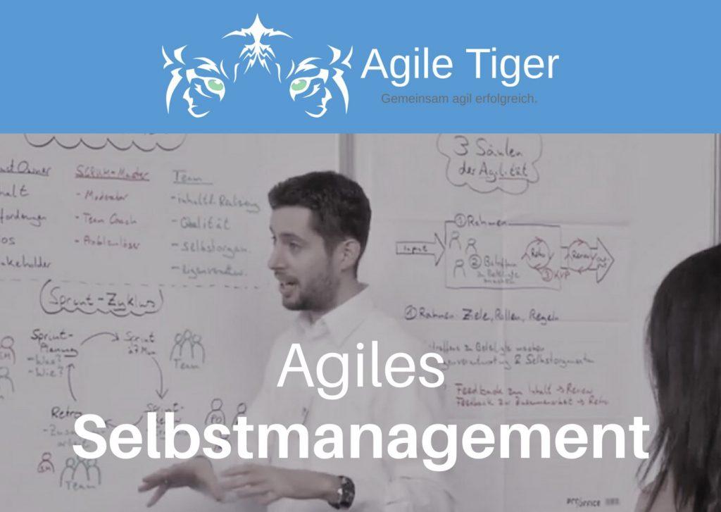 Onlinekurs agiles Selbstmanagement