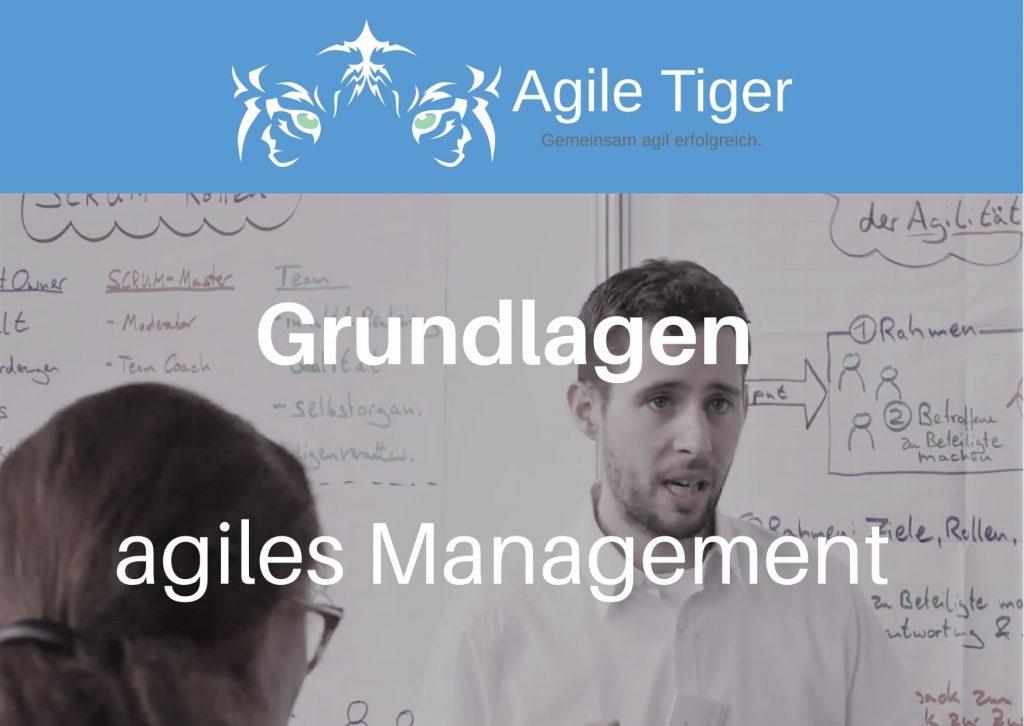 Onlinekurs zu Grundlagen im agilen Management