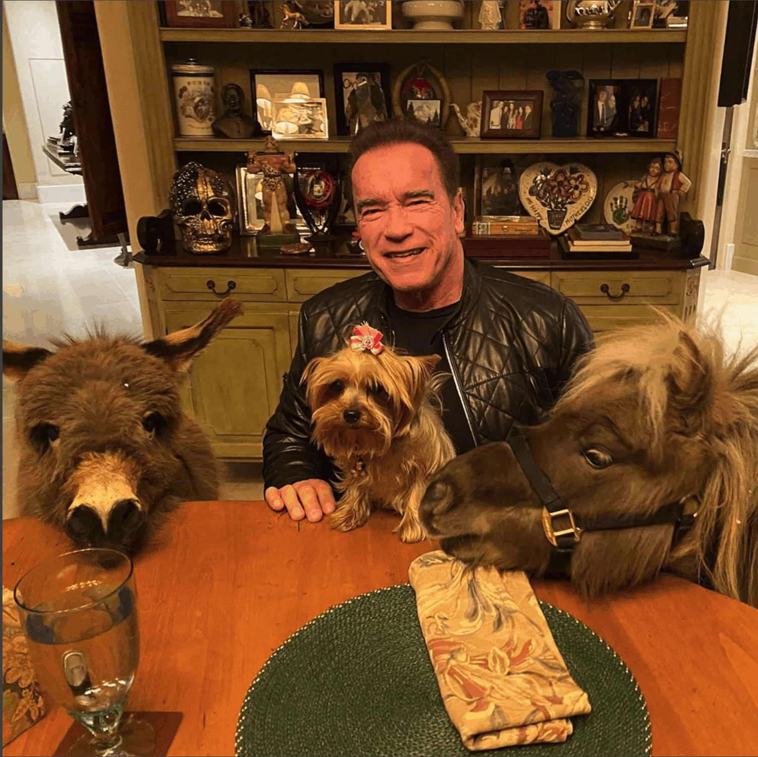 Arnold Schwarzenegger with ponies and puppy