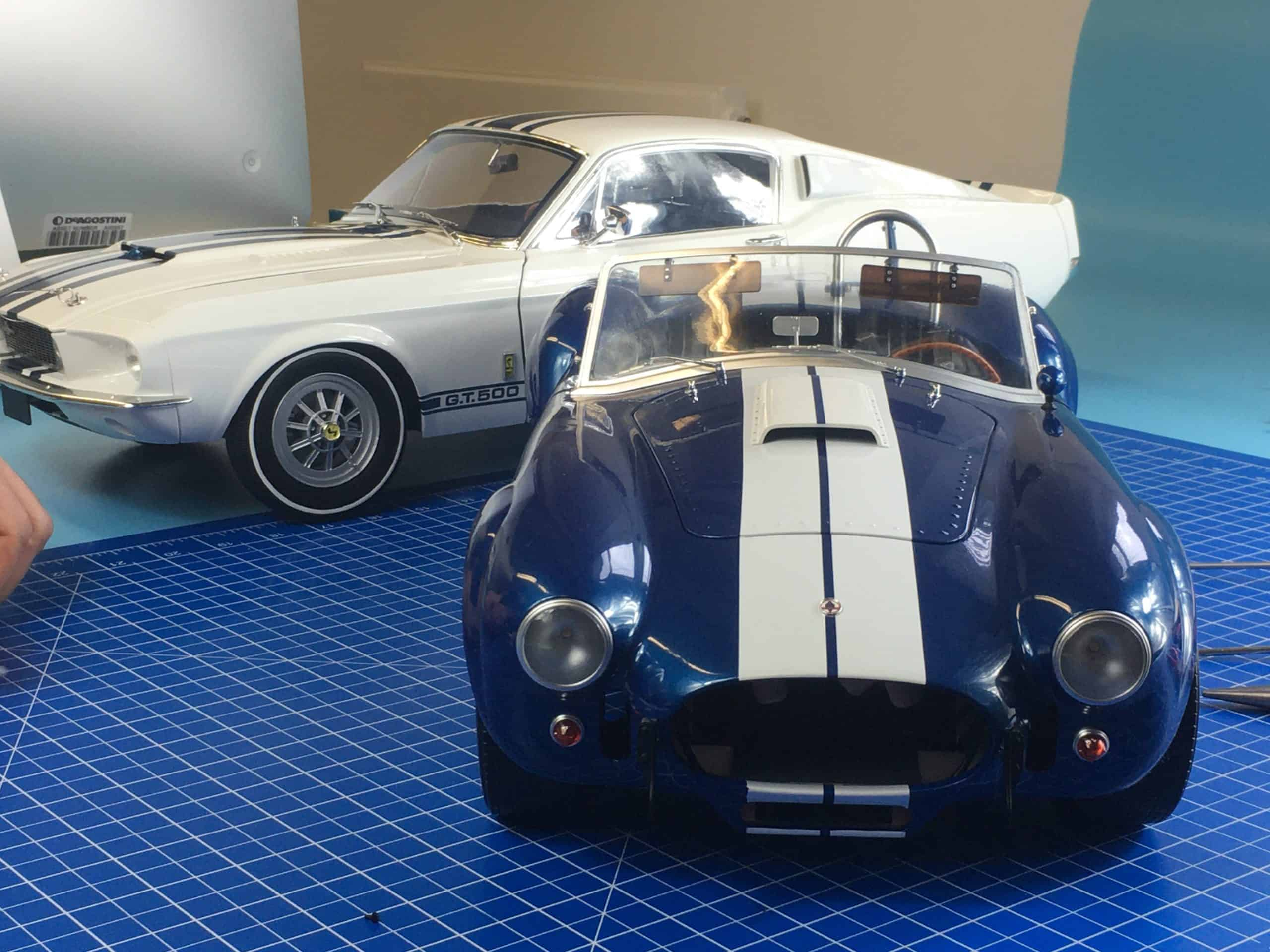 How the Cobra got its Stripes