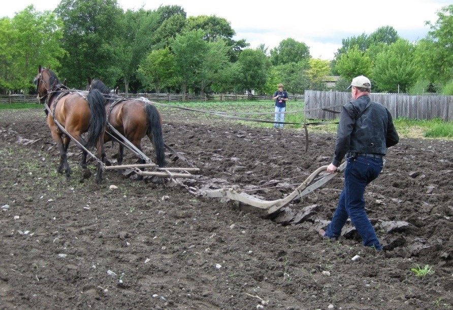 A person tilling a field with a couple horses  Description automatically generated with low confidence