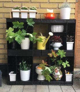 Dekorativ væg og opbevaring med Agro Block.