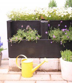 to Agro Block med dekorative blomster
