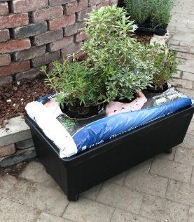 Homefarm kasvien kanssa