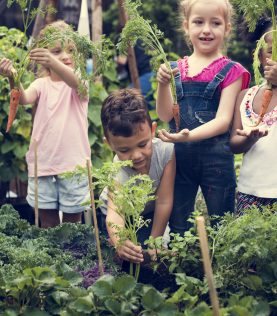 Koulujen maatalouden lapset ja Agro Block