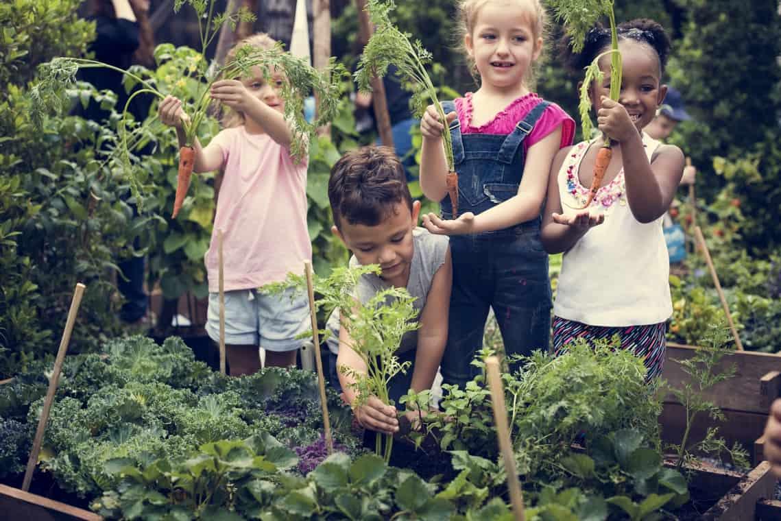 Agricultura escolar con Agro Block