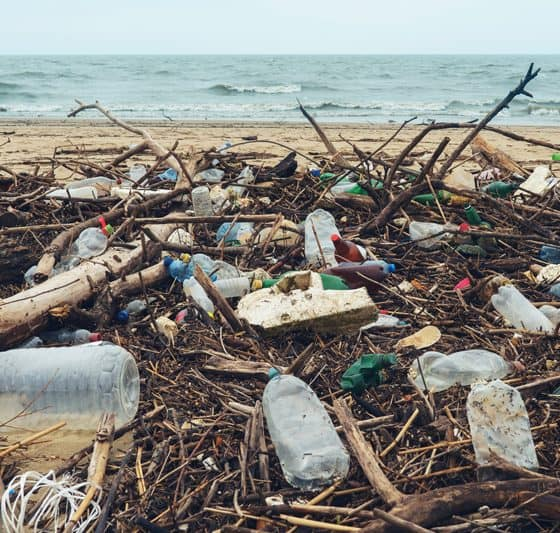 Contaminación plástica botellas de basura playa