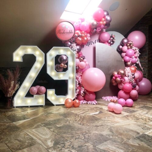 29 Pink Balloons and Backdrop