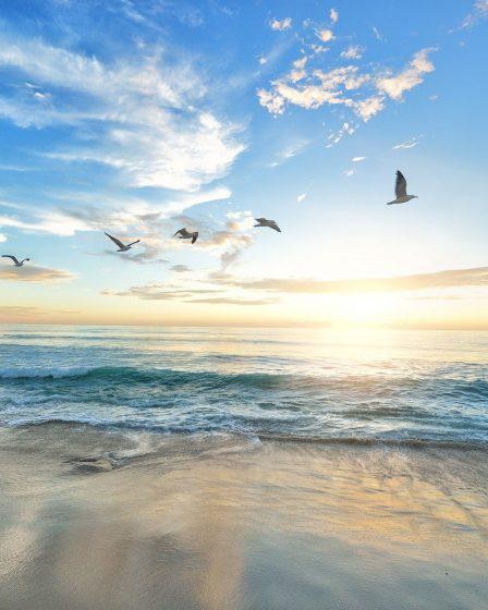 beach 1852945 1920
