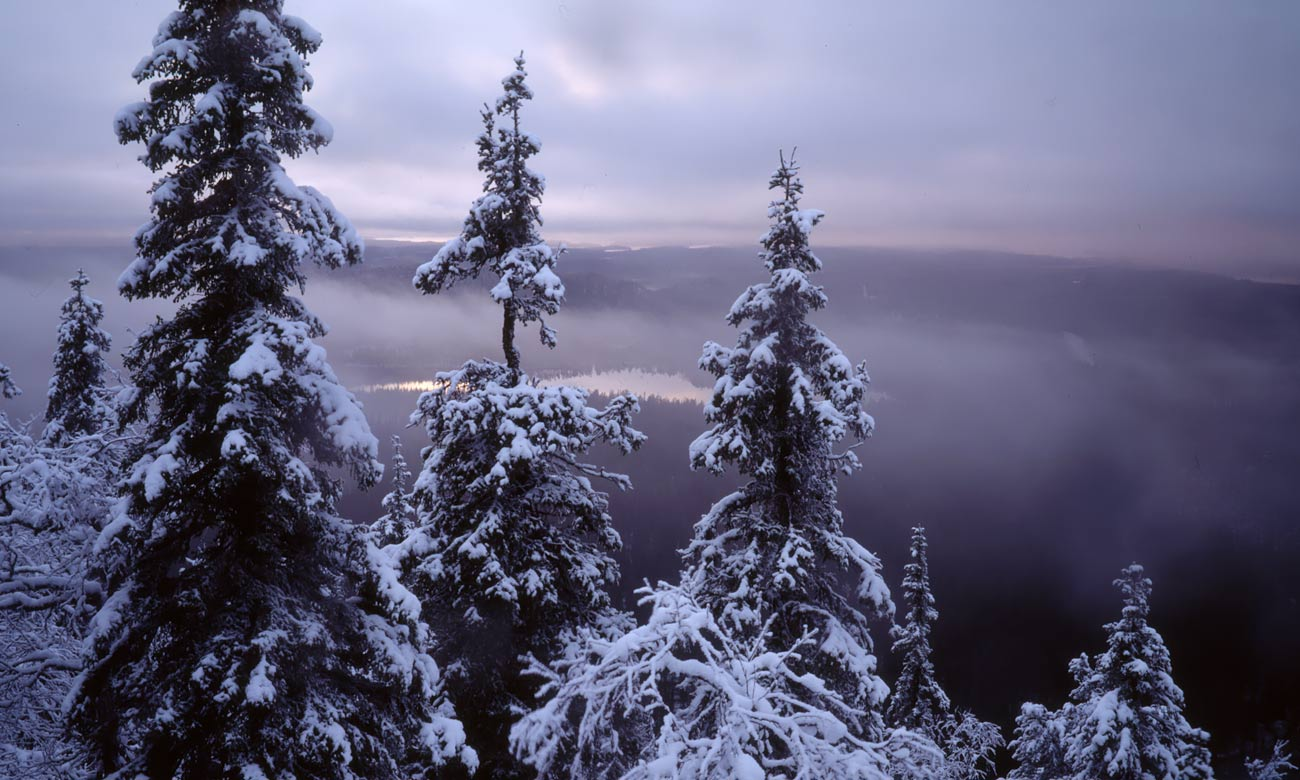 AKUprintti - Tauno Kohonen - Talvimaisema 2