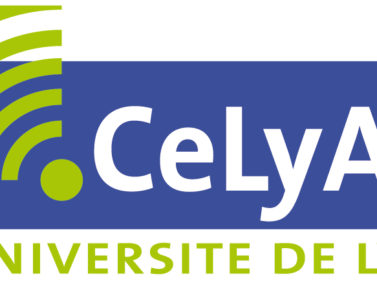 "CeLya Summer School ""Hearing in noise"""