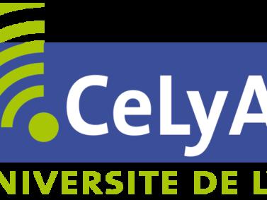 """CeLya Summer School """"Hearing in noise"""""""