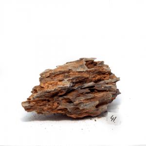 Dragon Stone M