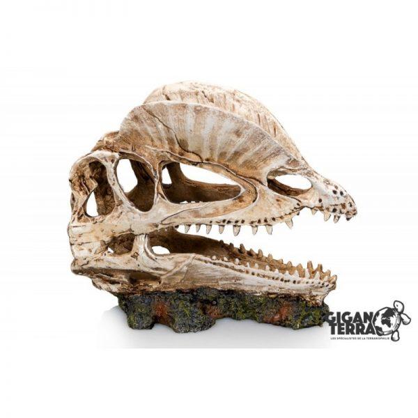 Giganterra Dinokallo 19cm