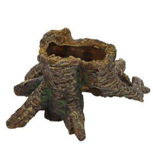 Hobby Stump Cavity 1