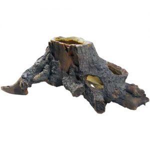 Hobby Stump Cavity 2