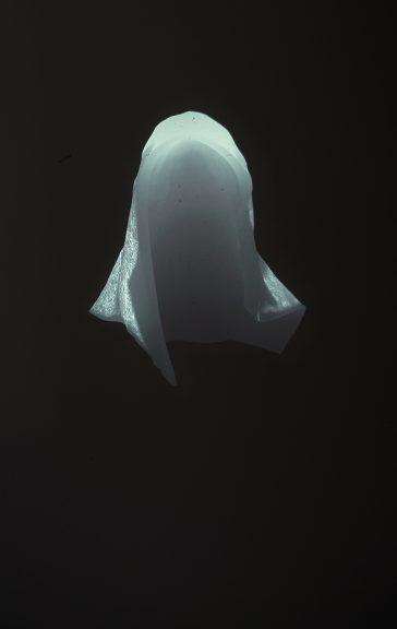 Untitled [KAP], slide projection, 1/1, 2016, Alexandra Crouwers