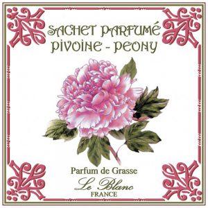 Fransk duftpose pæon