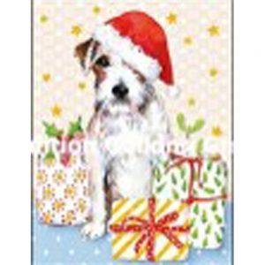 Mini kort med kuvert 105-188