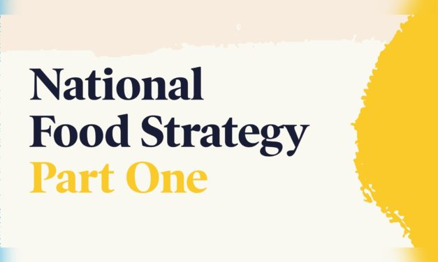 Feeding children – Food Strategy recommendations