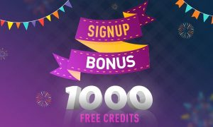 Online Casino Signup Bonus - What to Look For in a Casino's Bonuses