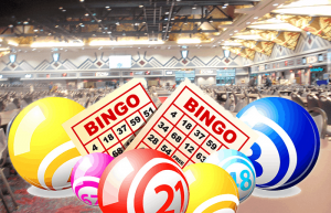 The Thing You Have to Learn When Playing Bingo on the Web