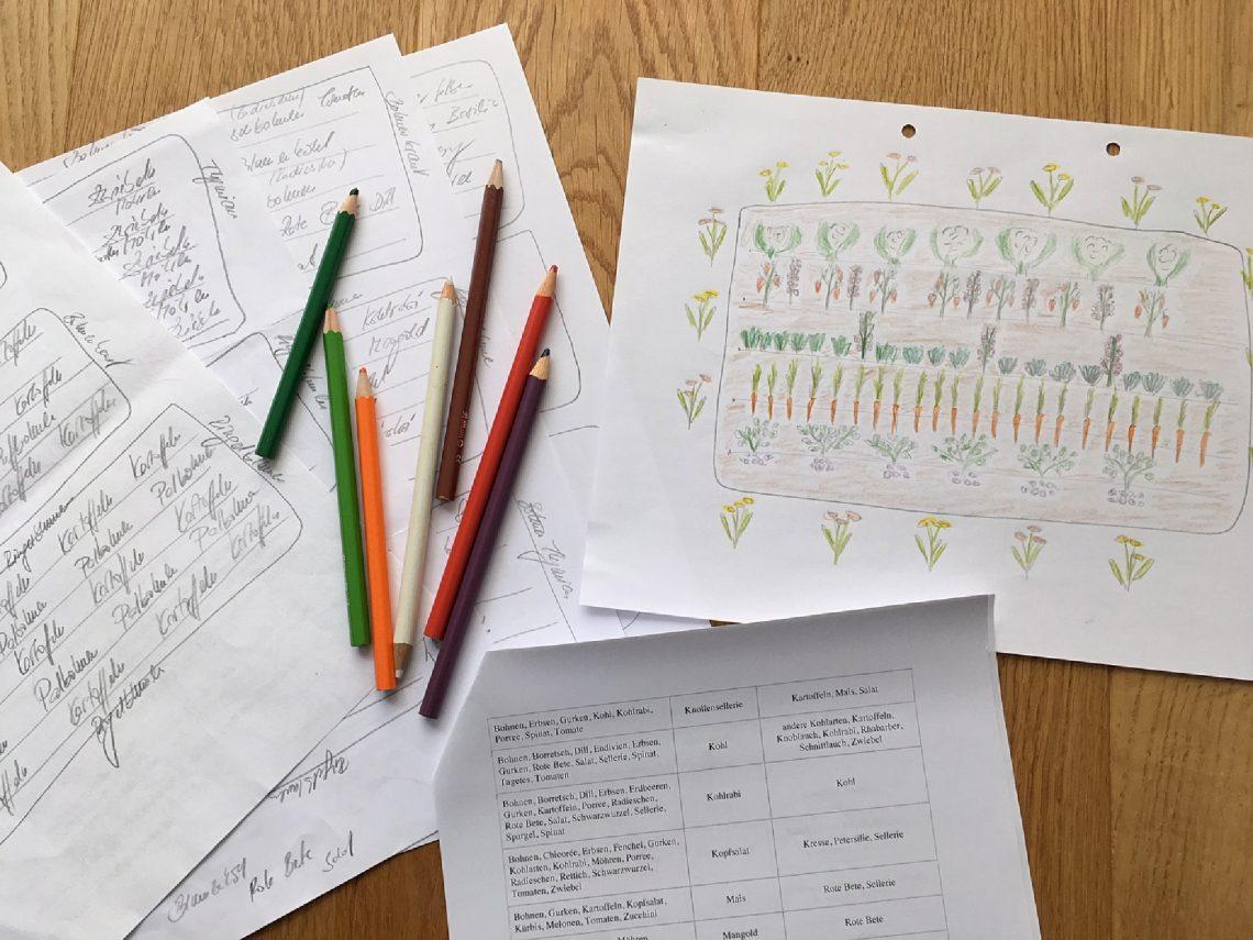 Tabelle, Beetübersicht und Buntstiftzeichung zur Mischkultur in unserem Garten