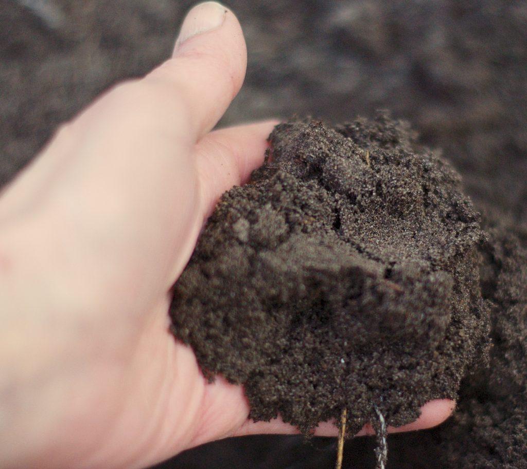 Hand mit Kompost