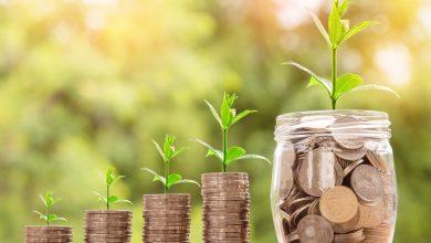 Investmentfonds bieten vielfältige Chancen
